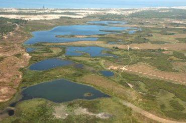 17.06.14 Tierra – Escasez de agua en Doñana