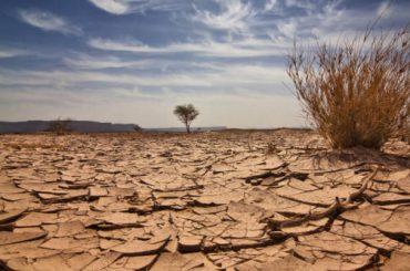 18.01.24 Tierra – Sequía